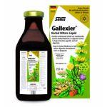 Power Health Salus Floradix Gallexier 250ml Πεπτικό Βοήθημα που Περιέχει Αγκινάρα