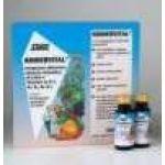 Kindervital 10X20 ml σε αμπούλες POWER HEALTH
