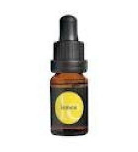 Lemon Essential Oil Αιθέριο Έλαιο Λεμονιού 10ml APIVITA